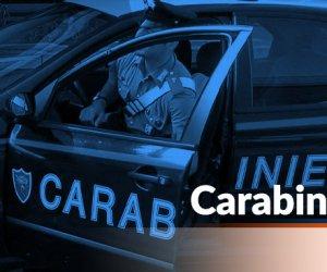 https://www.tp24.it/immagini_articoli/11-11-2020/1605074576-0-mafia-droga-e-corse-clandestine-di-cavalli-decine-di-arresti-in-sicilia.jpg