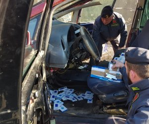 https://www.tp24.it/immagini_articoli/14-02-2020/1581670237-0-sicilia-tartaruga-protetta-sigarette-contrabbando-sequestrate-palermo.jpg